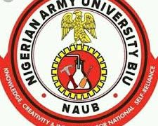 NAUB Admission List for [2019/2020 1st batch] Academic Session